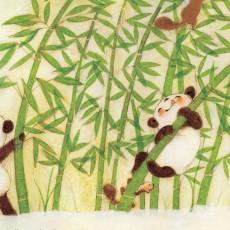 Meet a little panda named Aya...