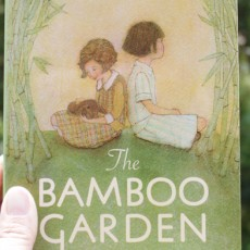 My First Book Cover for Young Readers: The Bamboo Garden